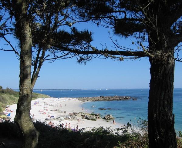 plage-dunes.jpg