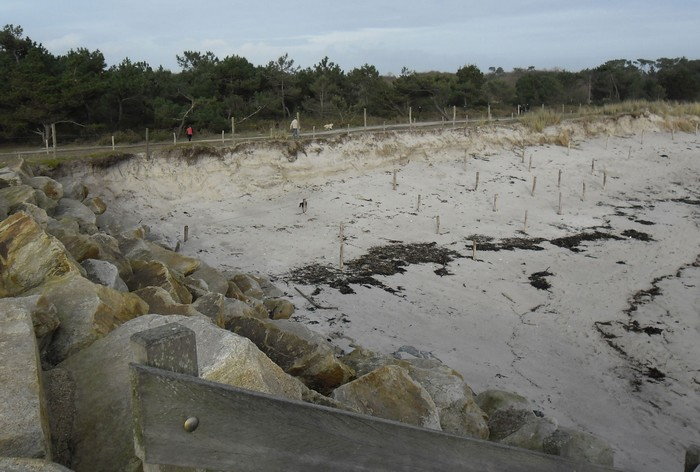 les marais de mousterlin